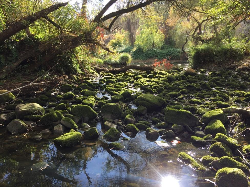 Yolo Fishing Access, Yolo County Parks