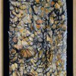 "Krista Anandakuttan, Weight of Wings, Monarchs, Plaster art, 24"" x 36"" x 2"""