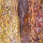 "Linda MacDonald, Far Corner Grizzly Creek Redwoods, Oil on canvas, 48"" x 60"", 2018"