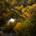 "David Nasater, Fall Color Along Cache Creek, Archival inkjet print, 22""x30"""