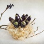 """Judy Yemma, Baby Eggplants, Archival inkjet print on Hahnemuhle photo rag, 28""""x22"""", $450"""