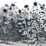 """Boy Meets Girl (There's more to sunflowers than their color), Pen and Ink on paper, 21.5"""" x 17.5"""""""