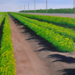 """Green Peppers, Hackman Road (Solano County), Acrylic on canvas, 18"""" x 24"""""""