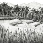 """Rice Terraces Near Munduk, Bali, Pen and Ink on paper, 19.5"""" x 25.5"""""""
