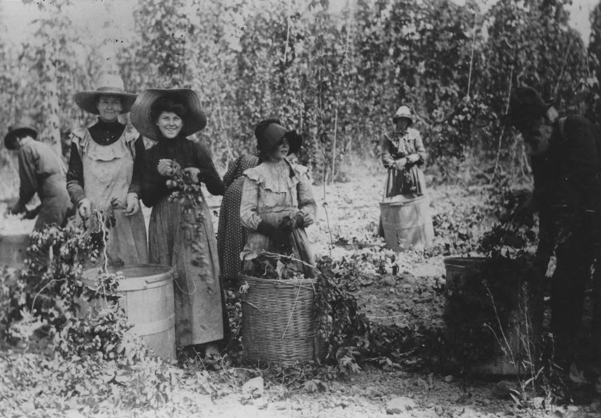 Women in Field 01-41[2]