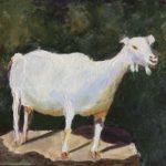 "Mary Neri King, Goat, Jesara Farm, Acrylic on canvas, 11""x14"", $250"
